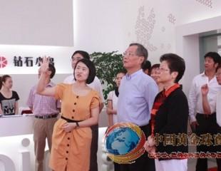 上海市委领导王战一行调研珠宝零售品牌钻石小鸟